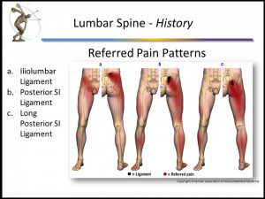 referred pain slide